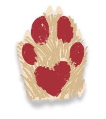 Illustration of a paw